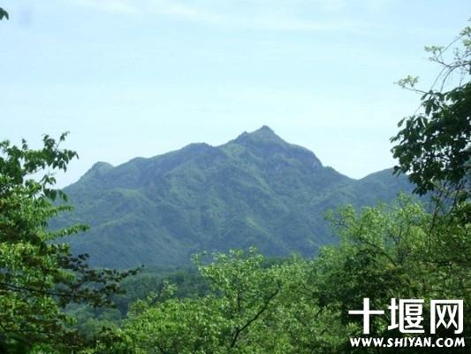 遥看对面的山峰.jpg