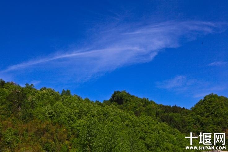 天空中云变幻出不同的形态.jpg