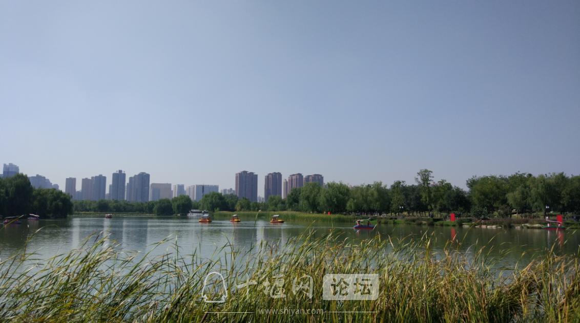 风和日丽的天气,可以选择在湖里划船,享受着阳光的沐浴,那感觉。。