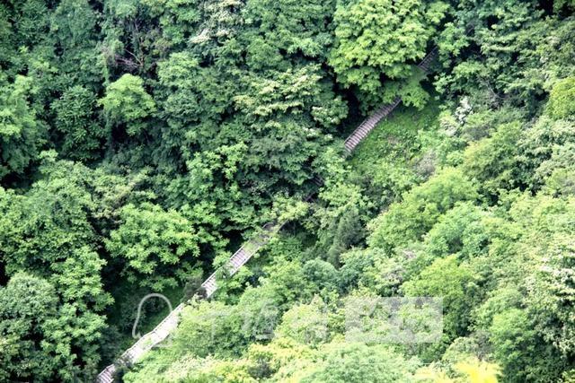 """「十堰」""""林业杯""""征文摄影十二:那林、那山、那人——标湖林场别样风景-12.jpg"""