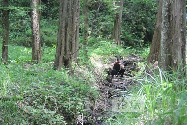"""「十堰」""""林业杯""""征文摄影十二:那林、那山、那人——标湖林场别样风景-19.jpg"""