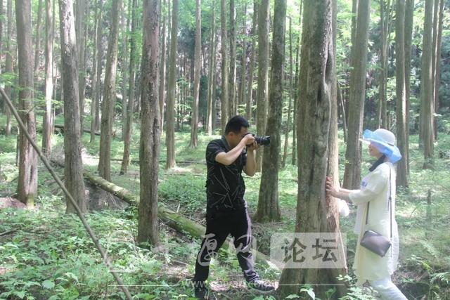 """「十堰」""""林业杯""""征文摄影十二:那林、那山、那人——标湖林场别样风景-25.jpg"""