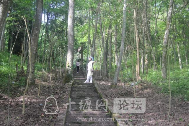 """「十堰」""""林业杯""""征文摄影十二:那林、那山、那人——标湖林场别样风景-28.jpg"""