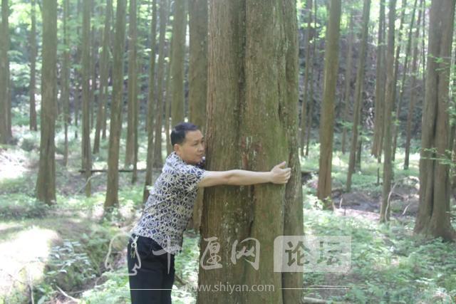 """「十堰」""""林业杯""""征文摄影十二:那林、那山、那人——标湖林场别样风景-31.jpg"""