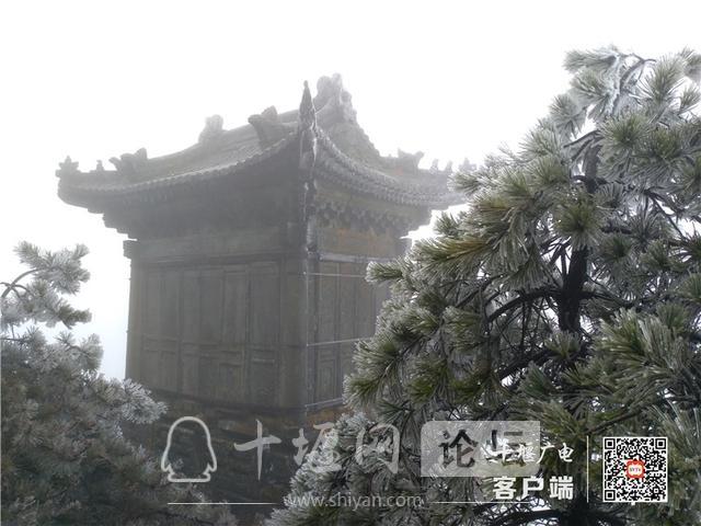 零下4℃!赶紧去湖北武当山上看雾凇奇景-6.jpg