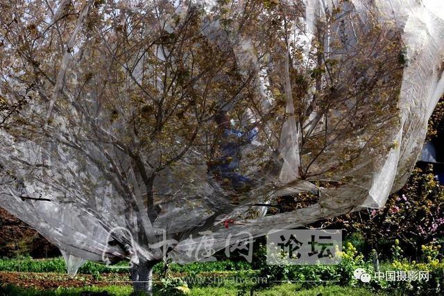 """陶德斌:疫情""""常""""镜头-99.jpg"""