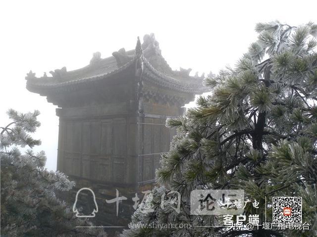 武当山降下入冬后第一场雪!多图带你看雪景-4.jpg