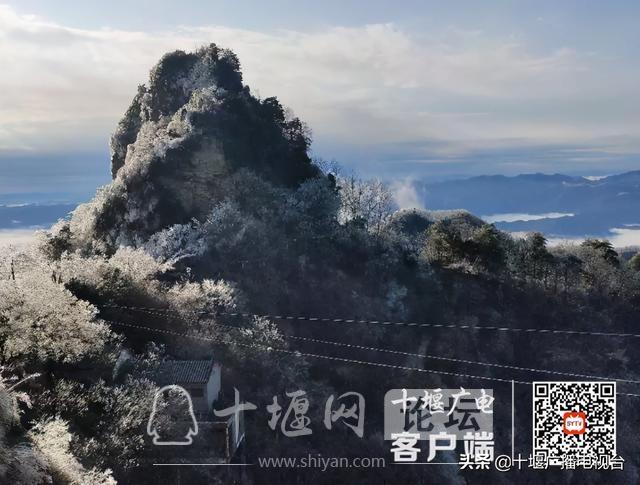 武当山降下入冬后第一场雪!多图带你看雪景-1.jpg