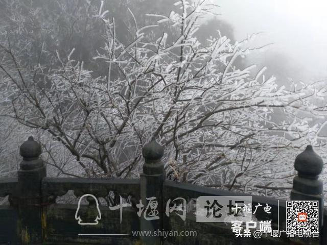 武当山降下入冬后第一场雪!多图带你看雪景-3.jpg