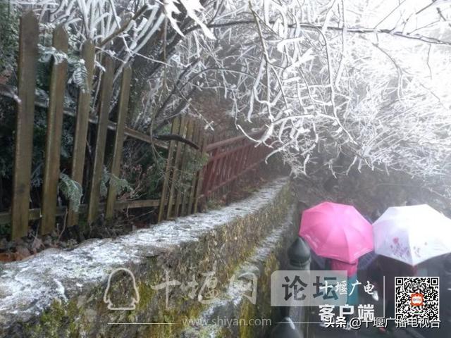 武当山降下入冬后第一场雪!多图带你看雪景-6.jpg
