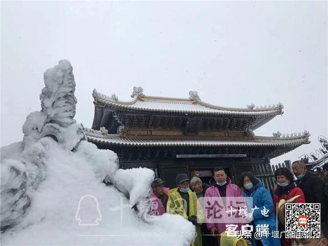 玉树琼花!雪后的武当雾凇美不胜收-3.jpg