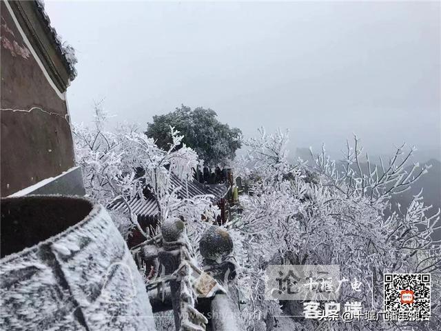 玉树琼花!雪后的武当雾凇美不胜收-2.jpg