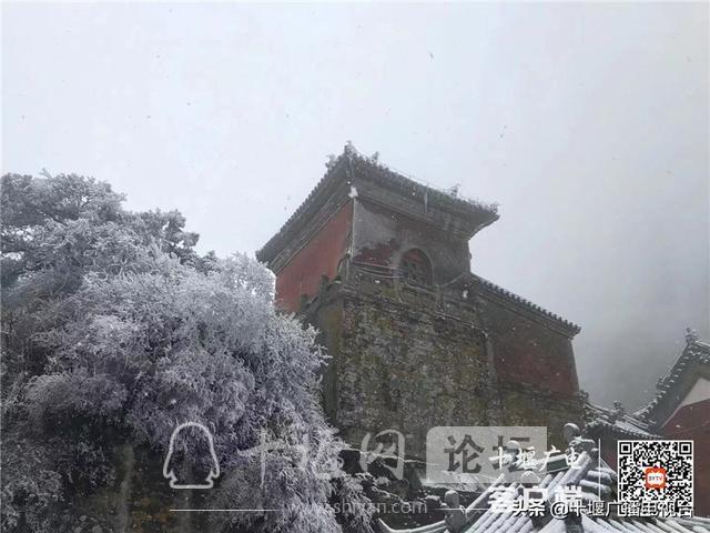 玉树琼花!雪后的武当雾凇美不胜收-6.jpg