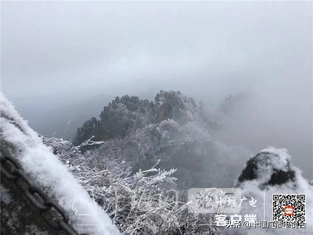 玉树琼花!雪后的武当雾凇美不胜收-8.jpg