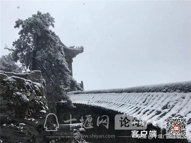 玉树琼花!雪后的武当雾凇美不胜收-7.jpg
