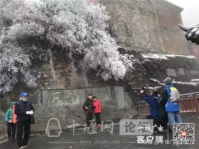 玉树琼花!雪后的武当雾凇美不胜收-9.jpg