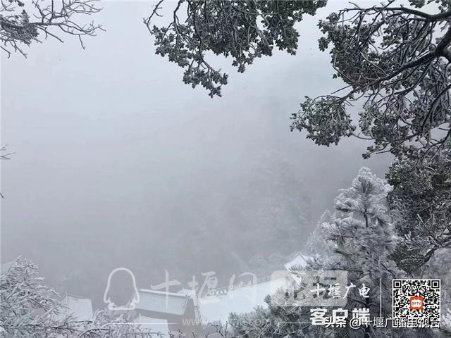 玉树琼花!雪后的武当雾凇美不胜收-12.jpg