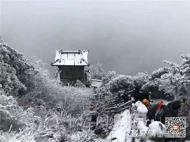 玉树琼花!雪后的武当雾凇美不胜收-11.jpg