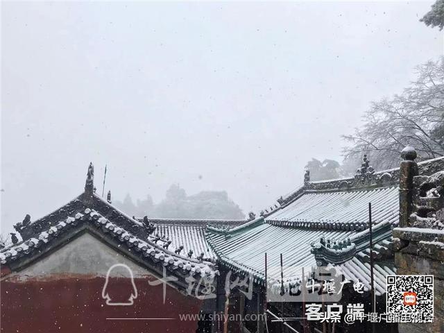 玉树琼花!雪后的武当雾凇美不胜收-13.jpg