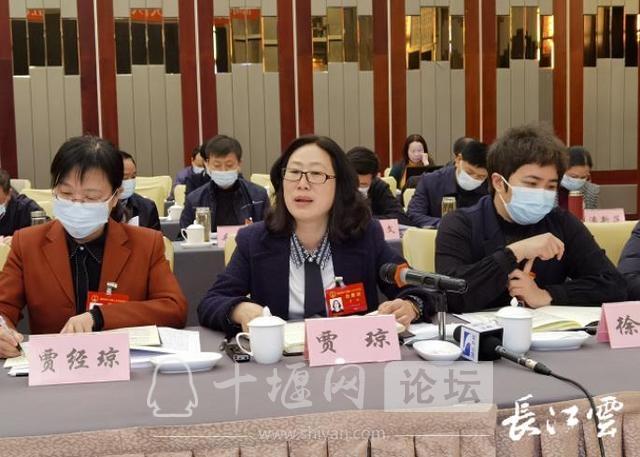 湖北省人大代表贾琼:支持十堰创建国家级或省级特优区