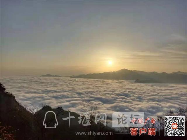 大美湖北 武当大明峰,云海奔腾,水墨画卷-1.jpg