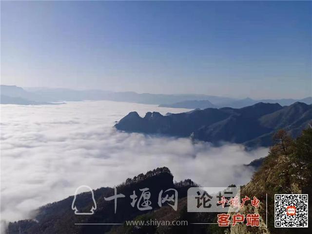 大美湖北 武当大明峰,云海奔腾,水墨画卷-2.jpg