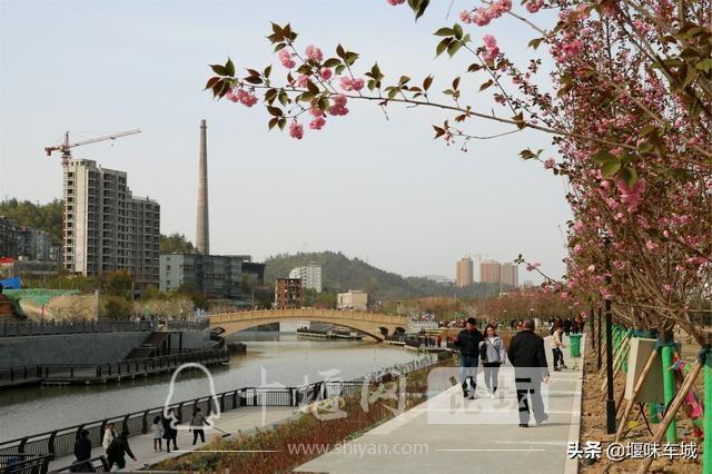 十堰百二河生态修复工程河畔春光美,市民休闲亲水游玩更逍遥-1.jpg