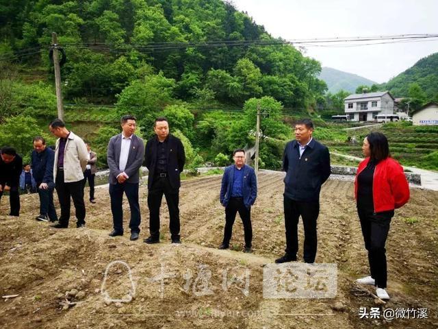 竹溪县:召开党建引领村级集体经济发展现场推进会-4.jpg