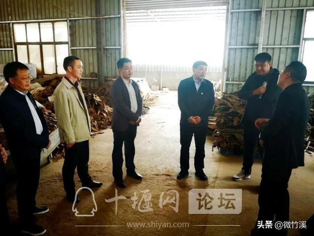 竹溪县:召开党建引领村级集体经济发展现场推进会-5.jpg