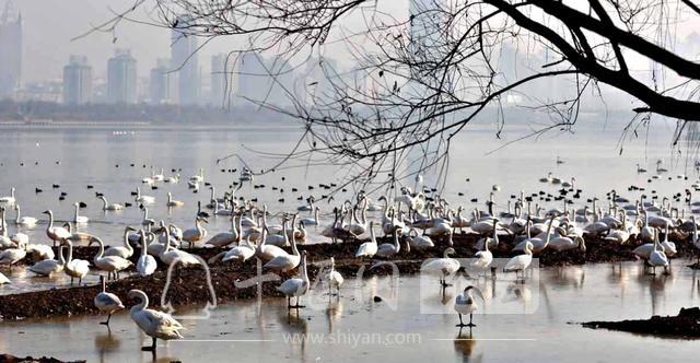 去过这些地方吗?一二三四五六七八九十,游遍锦绣山河-4.jpg