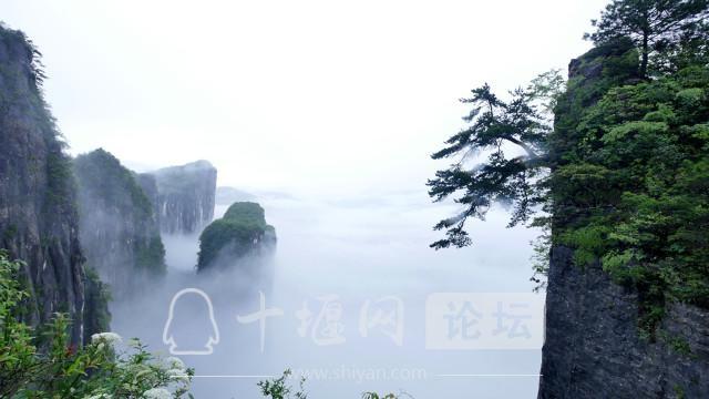 湖北最值得打卡的11个绝美景区-3.jpg