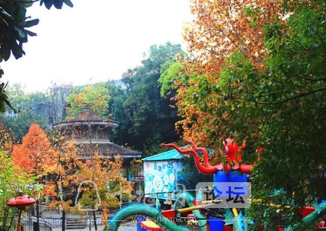 """十堰""""巨无霸""""公园,年接待游客上百万人次,日氧气产生量1.85吨-3.jpg"""