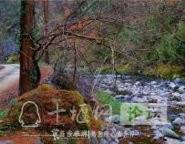 「十堰」天然氧吧!来竹溪八卦山邂逅醉美风景