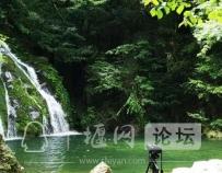 """「十堰」林业杯""""征文摄影十六:双竹林场:生态优先 绿色发展"""