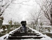 「十堰」用照片推介十堰!东风员工摄影作品三年入选平遥国际摄影展