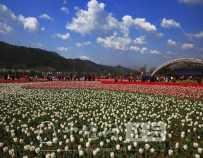风景图集:十堰黄龙滩旅游区风景美图