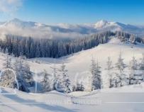 十堰天气要暴走!刚刚这里下雪了,这样的景色你爱不爱?