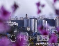 湖北十堰:春色斑斓染车城