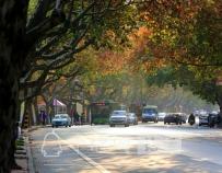 图虫街拍摄影:十堰最美的街道